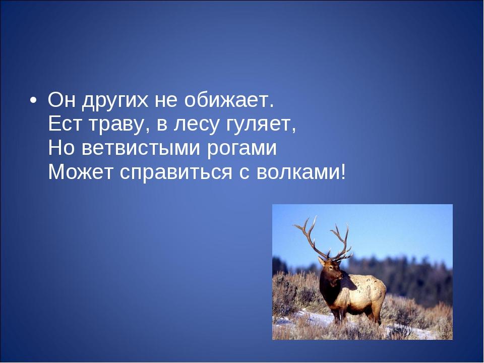 Он других не обижает. Ест траву, в лесу гуляет, Но ветвистыми рогами Может сп...