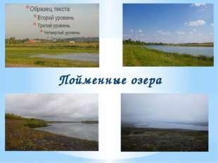 Пойменные озера