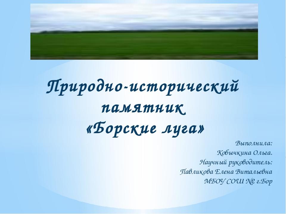 Природно-исторический  памятник  «Борские луга»