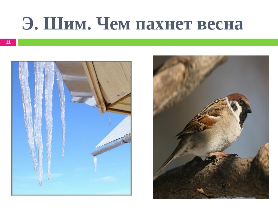 Э. Шим. Чем пахнет весна *