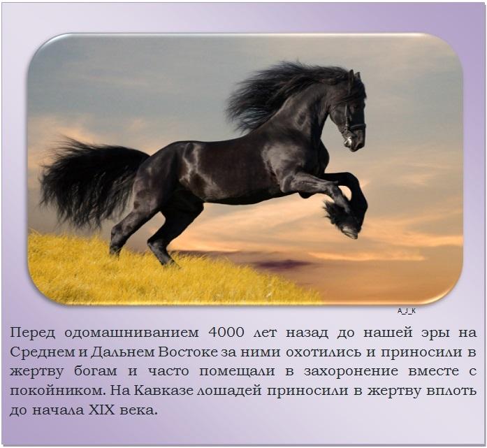 C:\Documents and Settings\Дом\Рабочий стол\Новая папка\1364759515_3.jpg
