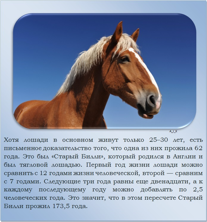 C:\Documents and Settings\Дом\Рабочий стол\Новая папка\1364759515_6.jpg