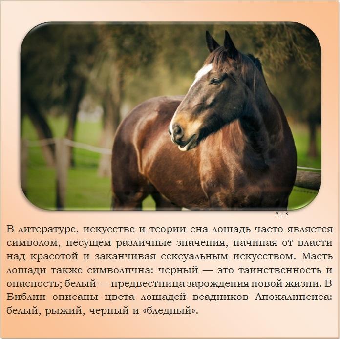 C:\Documents and Settings\Дом\Рабочий стол\Новая папка\1364759601_15.jpg
