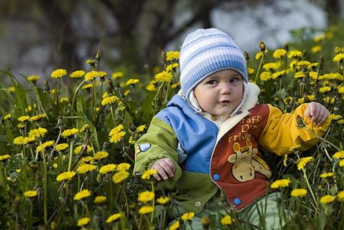 http://detstvovmeste.ru/102012/0_b7bc_729925e3_L.jpg