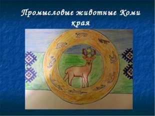 Промысловые животные Коми края
