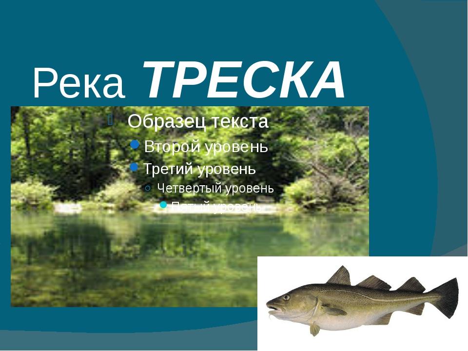 Река ТРЕСКА