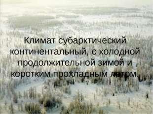 Климат субарктический континентальный, с холодной продолжительной зимой и кор