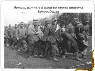 Немцы, взятые в плен во время штурма Кенигсберга