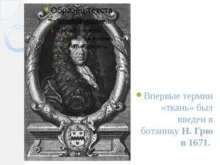Впервые термин «ткань» был введен в ботанику Н.Грю в 1671.