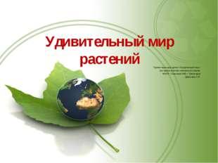 Удивительный мир растений Презентацию для урока «Окружающий мир» составила уч