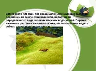 Затем около 425 млн. лет назад маленькие зеленые растения появились на земле