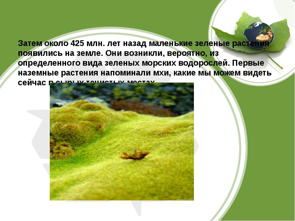 Затем около 425 млн. лет назад маленькие зеленые растения появились на земле...