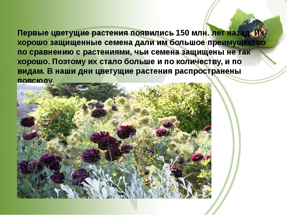 Первые цветущие растения появились 150 млн. лет назад. Их хорошо защищенные...