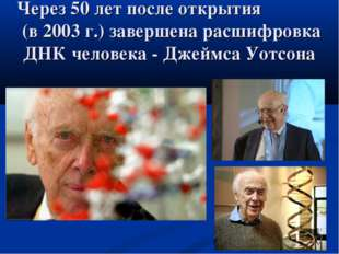 Через 50 лет после открытия (в 2003 г.) завершена расшифровка ДНК человека -