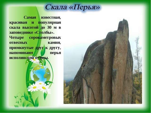 Самая известная, красивая и популярная скала высотой до 30 м в заповеднике «...