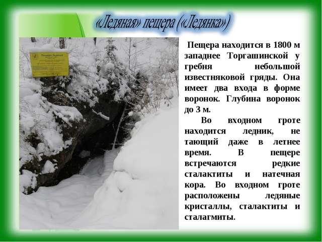 Пещера находится в 1800 м западнее Торгашинской у гребня небольшой известняк...