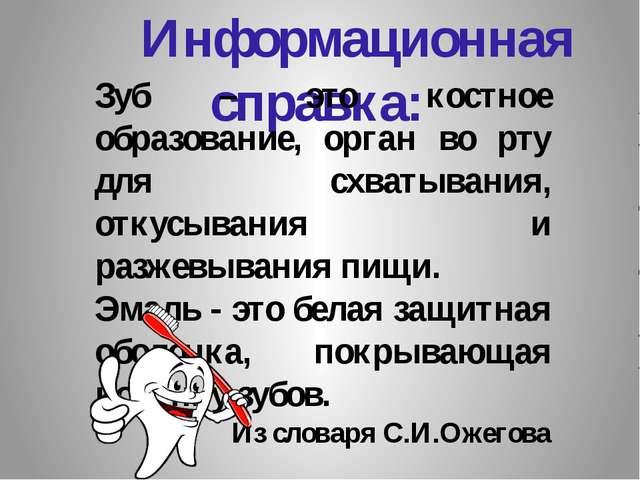 Информационная справка: Зуб – это костное образование, орган во рту для схва...