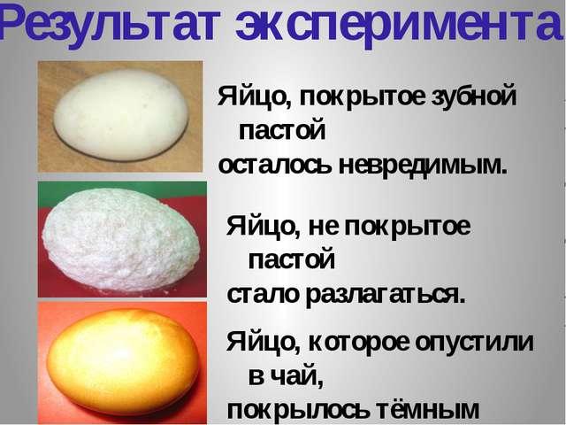 Результат эксперимента: Яйцо, которое опустили в чай, покрылось тёмным налёто...