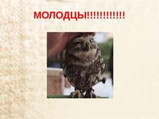 МОЛОДЦЫ!!!!!!!!!!!!