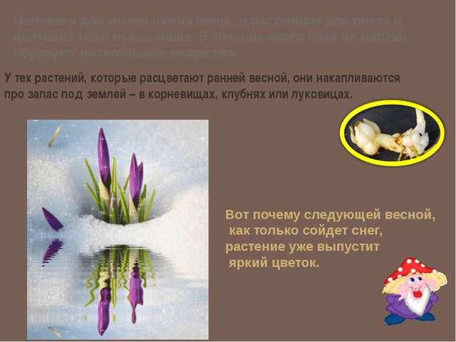 Человеку для жизни нужна пища, и растениям для роста и цветения тоже нужна пи...