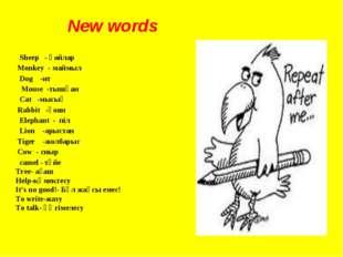 New words Sheep - қойлар Monkey - маймыл Dog -ит Mouse -тышқан Cat -мысық Rab