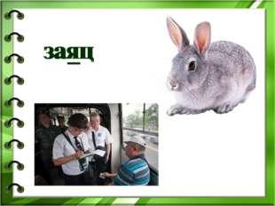 заяц заяц ′ ′