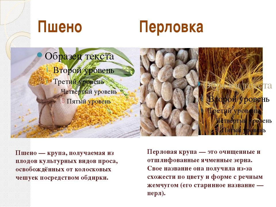 Пшено Перловка Пшено — крупа, получаемая из плодов культурных видов проса, о...