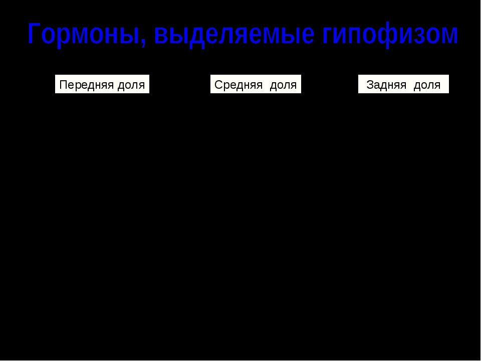 Передняя доля Гормон роста (СТГ); Регуляторные: АКТГ (адренокортикотропный),...