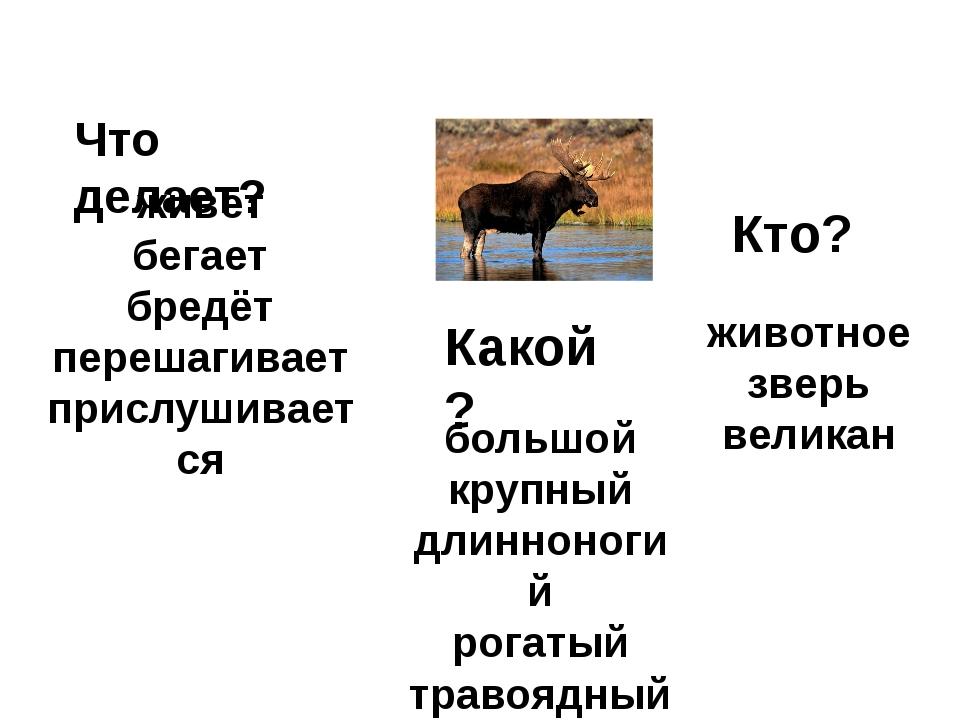 Кто? животное зверь великан Какой? большой крупный длинноногий рогатый травоя...