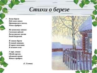 Стихи о березе Белая береза Под моим окном Принакрылась снегом, Точно серебр