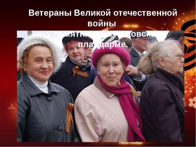 Ветераны Великой отечественной войны у памятника на чижовском плацдарме.