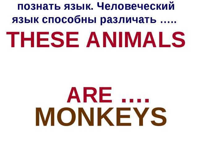 Даже животные могут познать язык. Человеческий язык способны различать ….. TH...