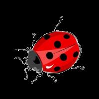 Клипарт - Божья коровка. Обсуждение на LiveInternet - Российский Сервис Онлайн-Дневников