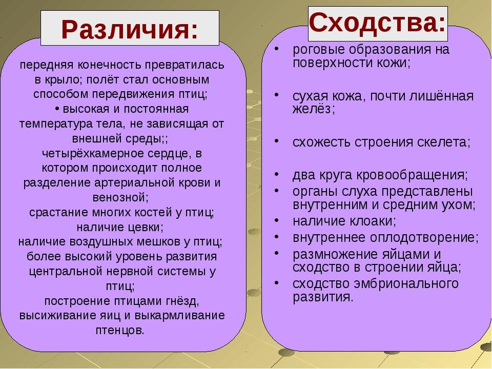 Различия: Сходства: