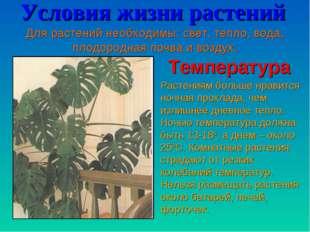Условия жизни растений Для растений необходимы: свет, тепло, вода, плодородна