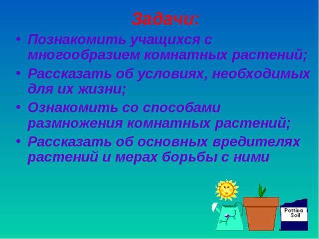 Задачи: Познакомить учащихся с многообразием комнатных растений; Рассказать о...