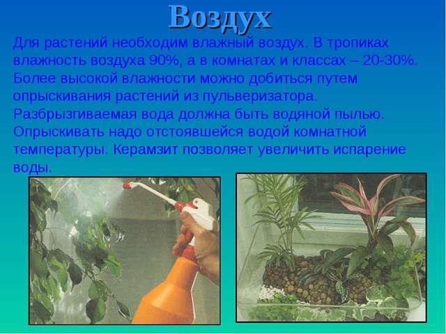 Воздух Для растений необходим влажный воздух. В тропиках влажность воздуха 90...