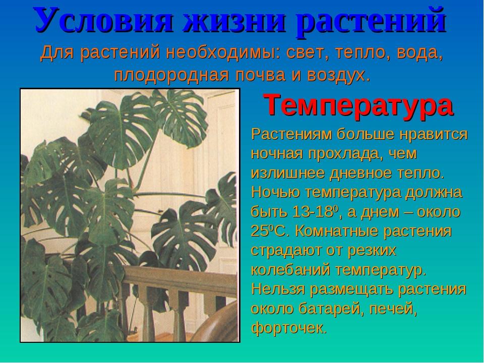 Условия жизни растений Для растений необходимы: свет, тепло, вода, плодородна...