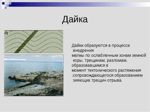 Дайка Дайки образуются в процессе внедрения магмы по ослабленным зонам земной...