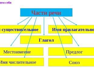 Части речи Имя существительное Имя прилагательное Местоимение Предлог Глагол