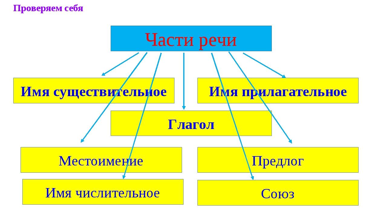 Части речи Имя существительное Имя прилагательное Местоимение Предлог Глагол...