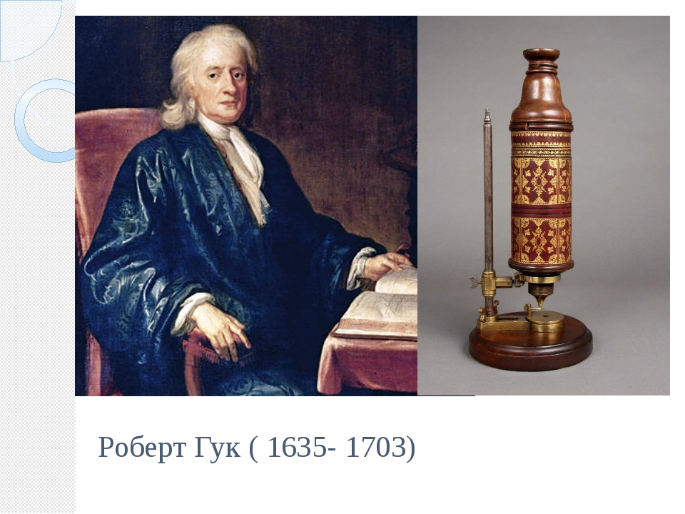Роберт Гук ( 1635- 1703)