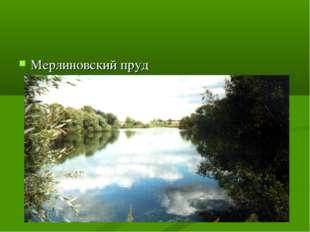 Мерлиновский пруд