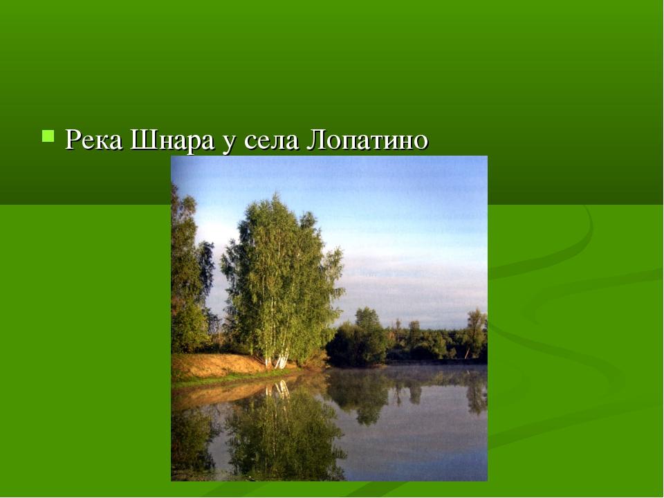 Река Шнара у села Лопатино