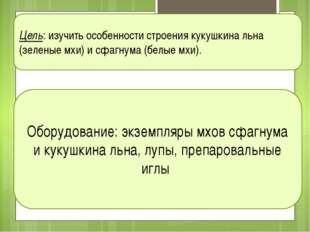 Цель: изучить особенности строения кукушкина льна (зеленые мхи) и сфагнума (б