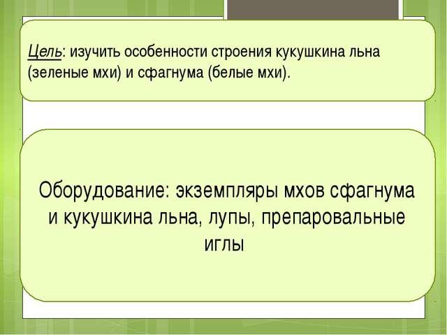Цель: изучить особенности строения кукушкина льна (зеленые мхи) и сфагнума (б...
