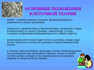 ОСНОВНЫЕ ПОЛОЖЕНИЯ КЛЕТОЧНОЙ ТЕОРИИ клетка - основная единица строения, функц