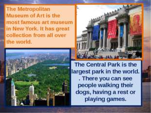 The Metropolitan Museum of Art is the most famous art museum in New York. It