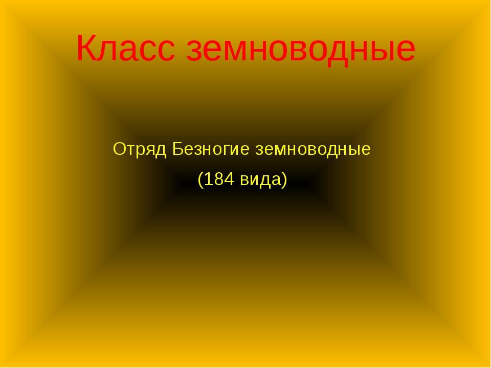 Класс земноводные Отряд Безногие земноводные (184 вида)