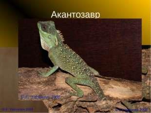 Акантозавр